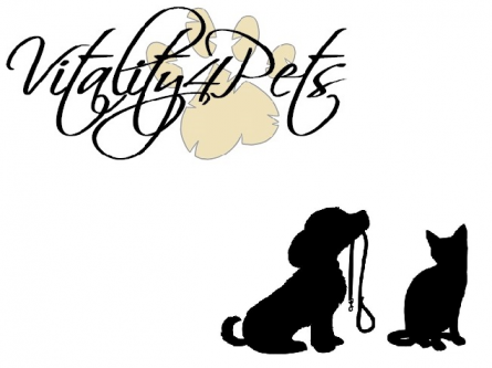 Friendly & Professional Pet Sitter & Dog Walker